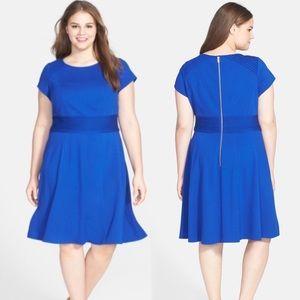 Eliza J Plus Blue Cap Sleeve Fit and Flare Dress